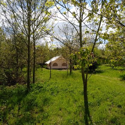 Glamping Canvas Lodge in Somerset at Woodland Escape