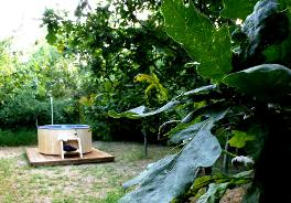 Glamping in Somerset with a hot tub amongst the trees at Woodland Escape