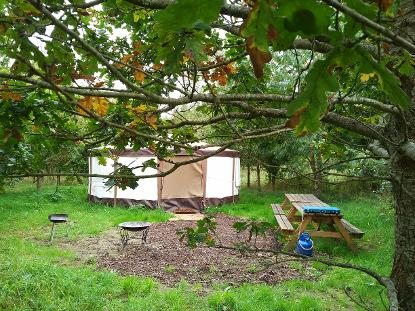 Stargazer Yurt glamping in Somerset at Woodland Escape