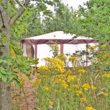 Yurts in Somerset at Woodland Escape Glamping Holidays