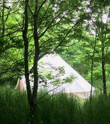 Off-grid luxury glamping holidays in the woods at Woodland Escape Glamping Holidays in Somerset at Woodland Escape