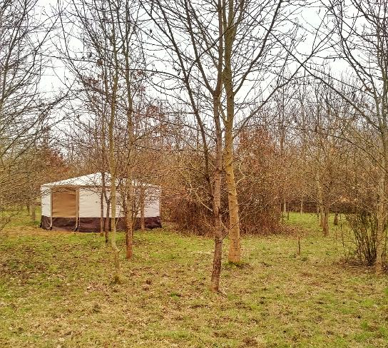 Yurt holidays in Somerset at Woodland Escape